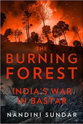 Image result for the burning forest amazon