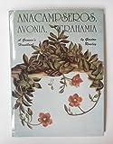 Anacampseros, Avonia, Grahamia: A Grower's Handbook