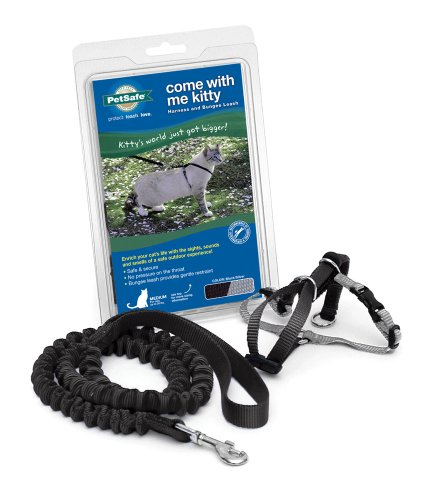 PetSafe Come with Me Kitty Harness and Bungee Leash, Harness for Cats 1
