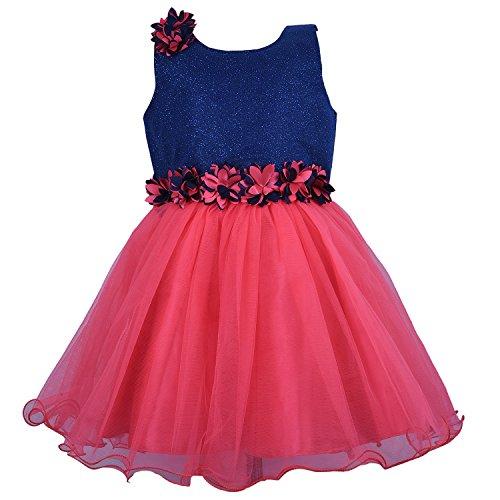 Baby Girl's Net Frock Dress