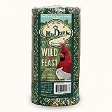 Mr. Bird Wild Bird Feast Small Wild Bird Seed Cylinder 28 oz.