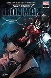 Tony Stark Iron Man #7