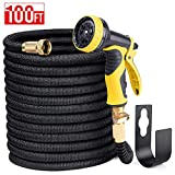 Delxo 100FT Expandable Garden Hose Water Hose with 9-Function High-Pressure Spray Nozzle,Black Heavy Duty Flexible Hose, 3/4' Solid Brass Fittings Leakproof Design (Black Hose)