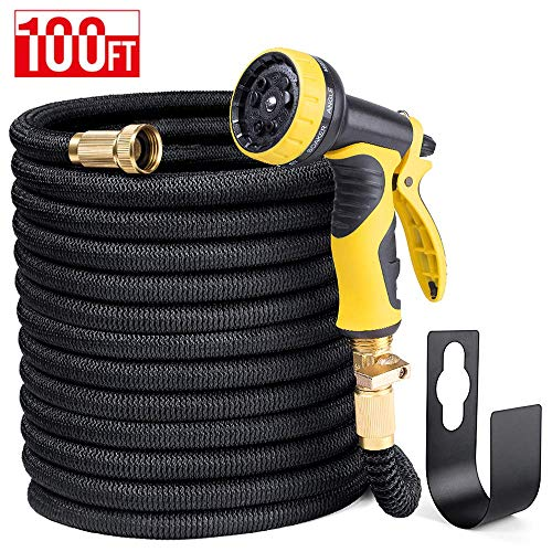 Delxo 100FT Expandable Garden Hose Water Hose with 9-Function High-Pressure Spray Nozzle,Black Heavy Duty Flexible Hose, 3/4' Solid Brass Fittings Leakproof Design (Black Hose) (Black)