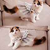 i'Pet® Princess Floral Cat Party Bridal Wedding Dress Small Dog Flower Tutu Ball Gown Puppy Dot Skirt Doggy Photo Apparel Stretchy Clothes Mesh Costume for Spring Summer Wear (White, Small)
