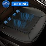 Big Ant Cooling Car Seat Cushion, 12V Automotive Universal Fit Seat Cushion Ventilate Breathable Air Flow with Holes for Driver Seat, Vehicle Front and Back Seats, Office Chair in Hot Summer(Black)