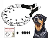 Mayerzon Dog Prong Training Collar, Stainless Steel Choke Pinch Dog Collar with Comfort Tips (Collar)