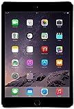 Apple iPad Mini 3 MGGQ2LL/A VERSION (64GB, Wi-Fi, Space Gray) (Renewed)