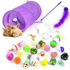Whoobee-24PCS-Cat-Toys-Kitten-Toys-AssortmentsVariety-Pack-for-Catnip-Toy-Cat-Tunnel-Bell-Crinkle-Balls-Feather-Wand-Cat-Teaser-Toy-and-Spring-Cat-Toys-Set-for-Cat-Puppy-Kitty-Kitten