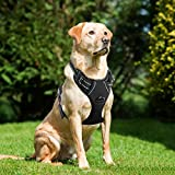 Lifepul Front Clip No Pull Dog Vest Harness - Dog Body Padded Reflective Vest with Handle - Oxford Material Vest for Dogs Comfort Control for Small Medium Large Dogs in Training &Walking