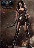 "Ata-Boy Batman v Superman Dawn of Justice Wonder Woman 2.5"" x 3.5"" Magnet for Refrigerators and Lockers"