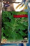 3 x Thai Organic Holy Basil Seed (2,400 Seeds)