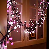 BIENNA Globe String Lights, UL Listed Plug in 10 ft/3 M 400 LED Ball Fairy Lighting [Waterproof] [8 Modes] for Outdoor Indoor Bedroom Patio Home Christmas Xmas Holiday Wedding Party(Pink+Cool White)