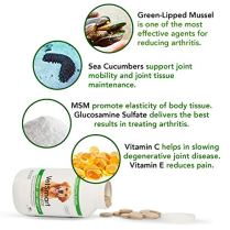 Joint-Supplement-for-Dogs-Green-Lipped-Mussel-MSM-Glucosamine-Formula-Helps-to-Restore-Mobility-Relieve-Arthritis-Hip-Dysplasia-Pain-and-Reduce-Inflammation-No-Artificial-Colors-or-Flavors