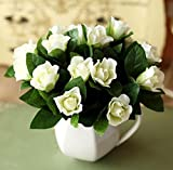 Hot Sale!!! Gardenia Jasminoides White Cape Jasmine Fragrant Flower Seeds, Original Pack, 20 Seeds / Pack, Bonsai Indoor Danh-danh