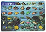 Product review for Painless Learning Saltwater Fish Placemat