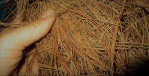 Heritage-Farms-Premium-Pine-Needles-100-Pine-Straw-Mulch-8-Quart