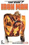 Tony Stark: Iron Man Vol. 2: Stark Realities