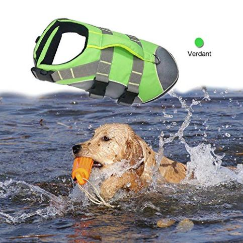 BOCHO-Wave-Riders-Reflective-Dog-LifeJacket-Super-Buoyancy-EVA-Lining-Adjustable-Dog-Safety-Vest-Small-Verdant