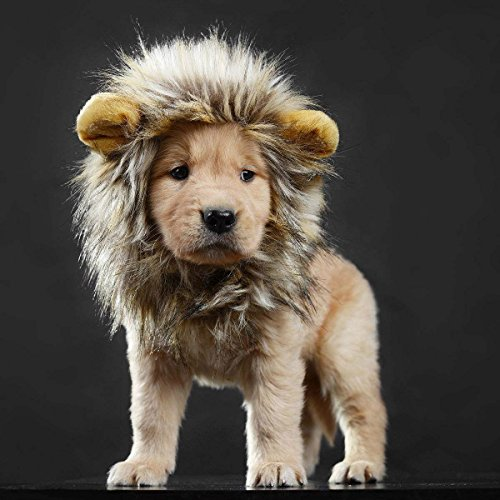 LCFUN Lion Mane Costume for Cat & Dog - Pet Wig Clothes for Halloween Party 1