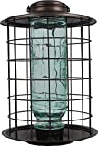 More Birds Caged Vintage Glass Songbird Feeder with Feeding Tray, 1.5-Pound Seed Capacity