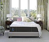 Sealy Response Premium 13-Inch Cushion Firm Tight Top Mattress, Queen