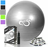 Exercise Ball -Professional Grade Exercise Equipment Anti Burst Tested with Hand Pump- Supports 2200lbs- Includes Workout Guide Access- 55cm/65cm/75cm/85cm Balance Balls (Silver, 55 cm)