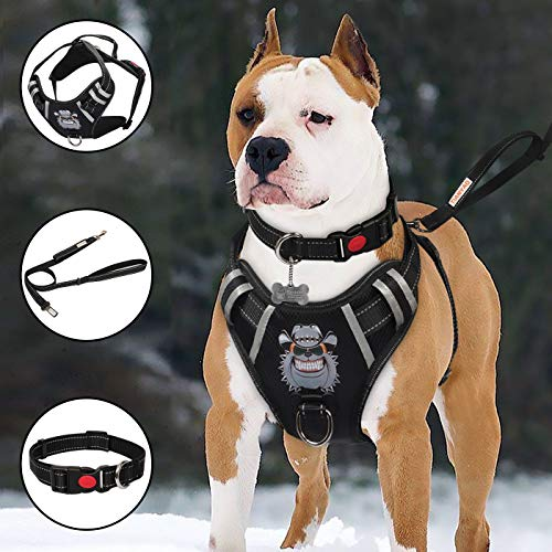 TIANYAO Big Dog Harness No-Pull Dog Vest Set Reflective Adjustable Oxford...