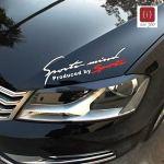 ISEE 360 Racing Auto Hood Die Cut Water Resistance Bumper Sides Windows Car Sticker (29X9 cm)