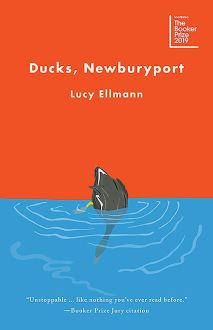 Image result for ducks newburyport