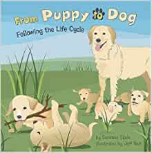 From Puppy To Dog Following The Life Cycle Amazing Science Life Cycles Slade Suzanne Buckingham Lyons Shelly Yesh Jeffrey Joseph 9781404849280 Amazon Com Books
