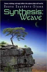 Front cover for Deane Saunders-Stowe's book, Synthesis Weave. It depicts a wheelchair user climbing up the side of a cliff