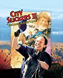City Slickers II: The Legend Of Curly's Gold poster thumbnail