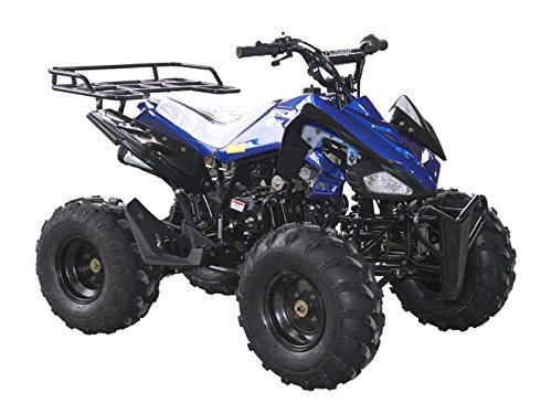 DONGFANG 125cc ATV SEMI-AUTO Four Wheelers 4 Stroke Engine 8' Tires Quads for Kids Blue