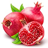 Russian Pomegranate Salavatski Punica granatum Cold hardy Zone 7 LIVE PLANT
