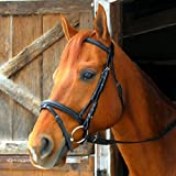 Product review for Exselle Dressage/Eventing Bridle