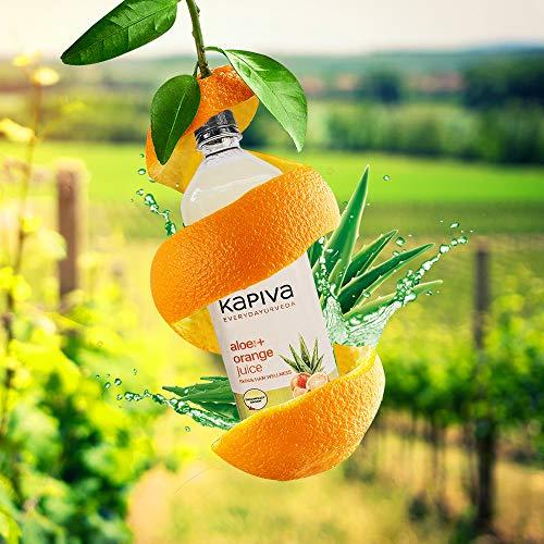 Kapiva Aloe Vera Juice 4