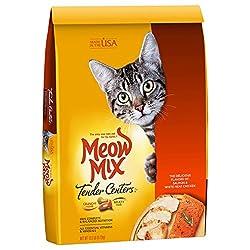 grain free dry cat food
