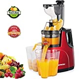 Masticating Juicer Machines, Hethtec Cold Press Juice Extractor with Large Dual-Chute and Clean Brush for Fruits and Vegetables, High Yield, BPA-Free, 60R/M, 150W