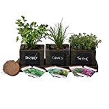 FATPLANTS Cedar Planter Box - Complete Herb Garden Indoor Kit - Herb Growing Kit - Grow Cooking Herbs Basil, Chives, Thyme, Oregano, Parsley & Cilantro (Wicker Brown)