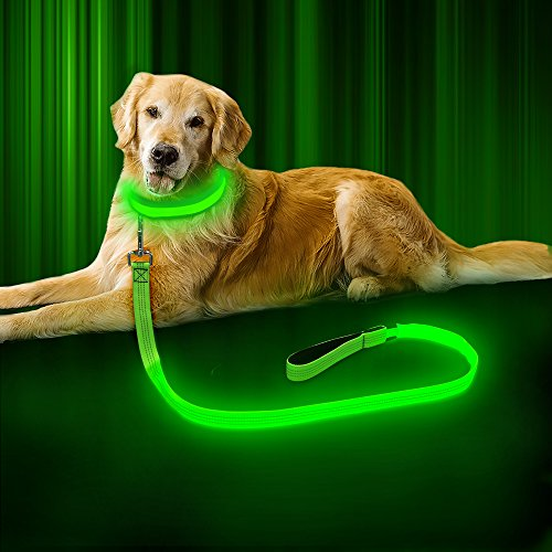 BSEEN LED Dog Leash - USB Rechargeable 47.2 inch 120 cm Reflective Night Safety Pet Leash LED Strip to Keep You and Your Dog Safe 1