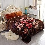 JML Heavy Korean Style Mink Fleece Blanket 85'x93' - 10lb 2 Ply Soft Thick Plush Bed Blanket for Autumn Winter(Rose/Brown, King)