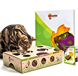 Cat Amazing - Best Cat Toy Ever! Interactive Treat Maze & Puzzle Feeder for Cats