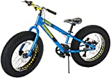 Mongoose Kong Fat Tire Mountain Bike for Kids and Children, Featuring 13-Inch/Small High-Tensile Steel Frame, 7-Speed Shimano Drivetrain, Mechanical Disc Brakes, and 20-Inch Wheels, Blue