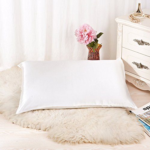 ALASKA BEAR - Natural Silk Pillowcase, Hypoallergenic, 19 momme, 600 thread count 100 percent Mulberry Silk, Queen Size with hidden zipper (1, Ivory(Natural Undyed White))