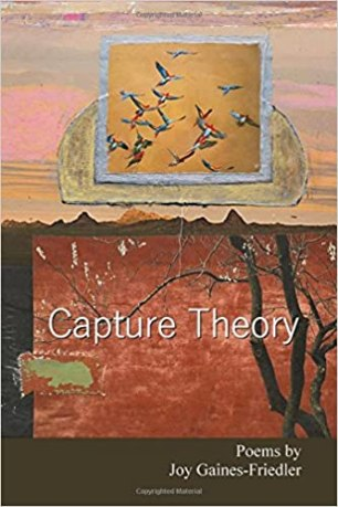 Image result for capture theory joy gaines
