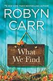 What We Find (Sullivan's Crossing Book 1)