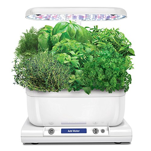 AeroGarden Harvest (Classic) with Gourmet Herb Seed Pod Kit, White