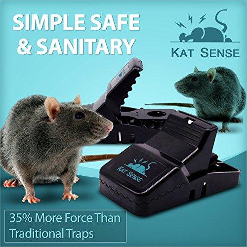 Pest Control Rat Traps