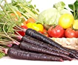 Heirloom Organic 60 Seeds Rare Purple Haze Black Carrot Carrots Unusual Delicious and Sweet F24
